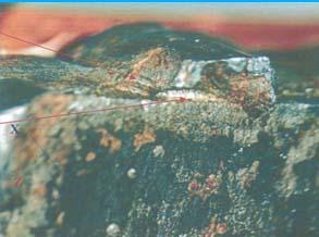 Axle Bracket Weld Failure under High Magnification